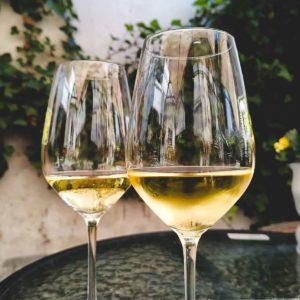 Zwei Gläser Riesling beim Weingut M. Schömann in Zeltingen