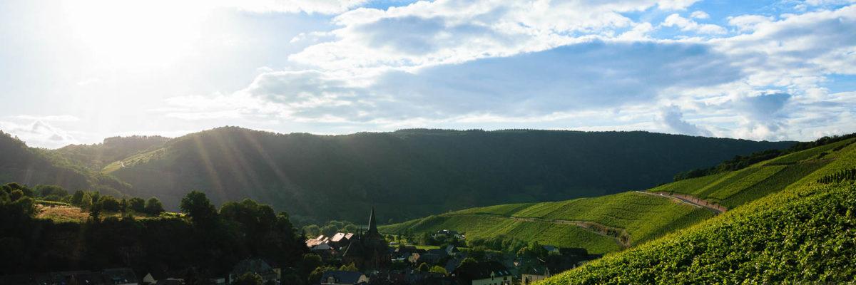 Auf der rechten Seite des Bildes wölbt sich der Weinberg Dhroner Hofberger in das Dhrontal hinein. In der Mitte des Bildes erkennt man den Ort Neumagen-Dhron. Im Hintergrund sind bewaldete Hänge und Wolken sowie die Sonne am blauen Himmel.