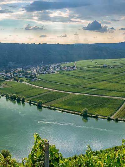 Blick von Wintricher Ohligsberg auf Minheimer Sonneninsel, Fluss Mosel, Landzunge, Ort Minheim und Weinberg Minheimer Rosenberg