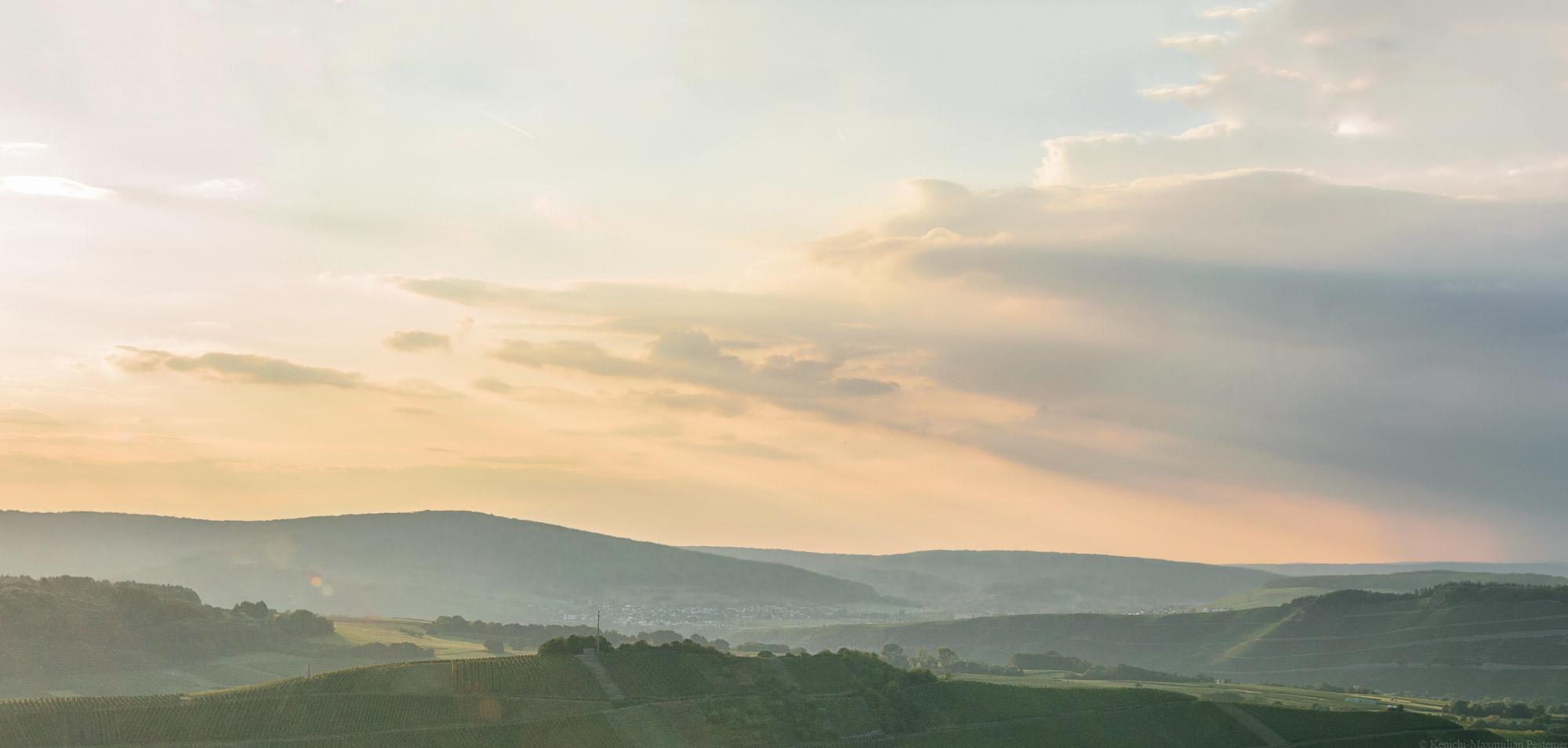 Auf dem Bild erkennt man die Weinberge des Moseltals beim Sonnenuntergang. Am Himmel ist Orange zusammen mit blau-grauen Wolken erkennbar. Es symbolisiert die Welt des Weins. Das ist das Titelbild des Universum Vinums,