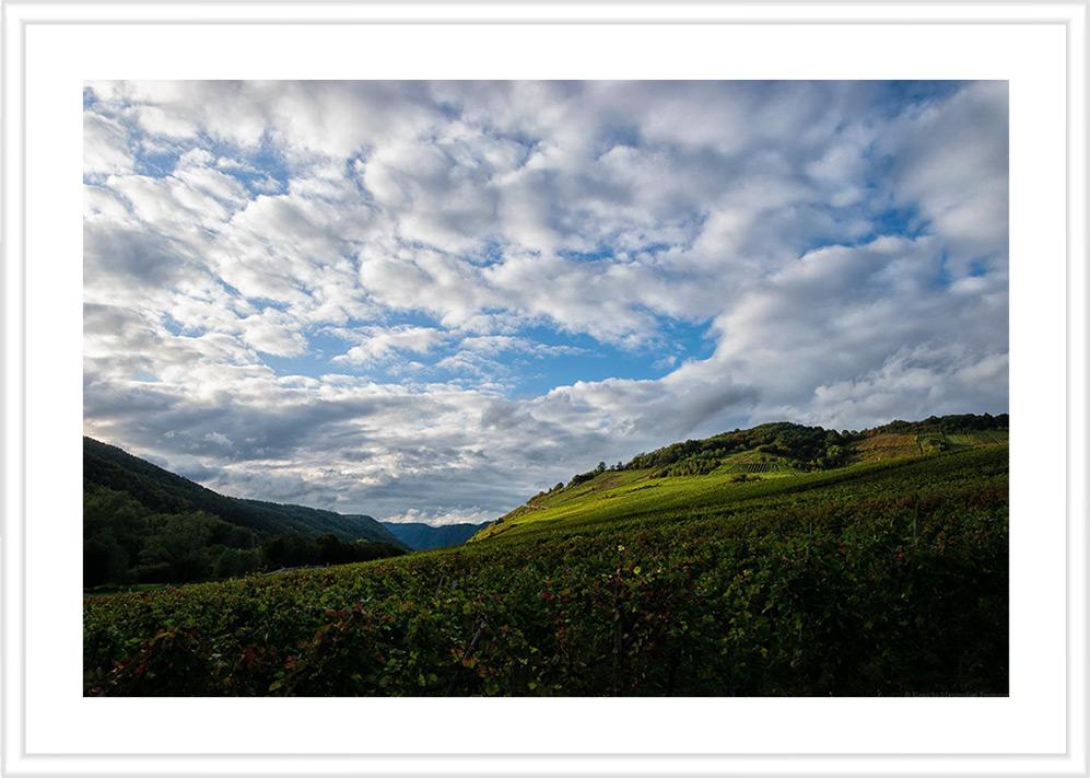 Bild mit weißem Holzrahmen und Passepartout: Der Nehrener Römerberg ist eine flache bis steile Lage. Weit im Hintergrund erblickt man den Bremmer Calmont.