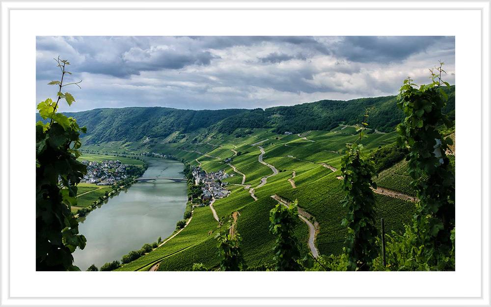 Im Tal liegt der Ort Piesport neben der Mosel. Daneben liegen steile Weinberge. Das Bild hat einen weißen Holzrahmen mit weißem Passepartout.