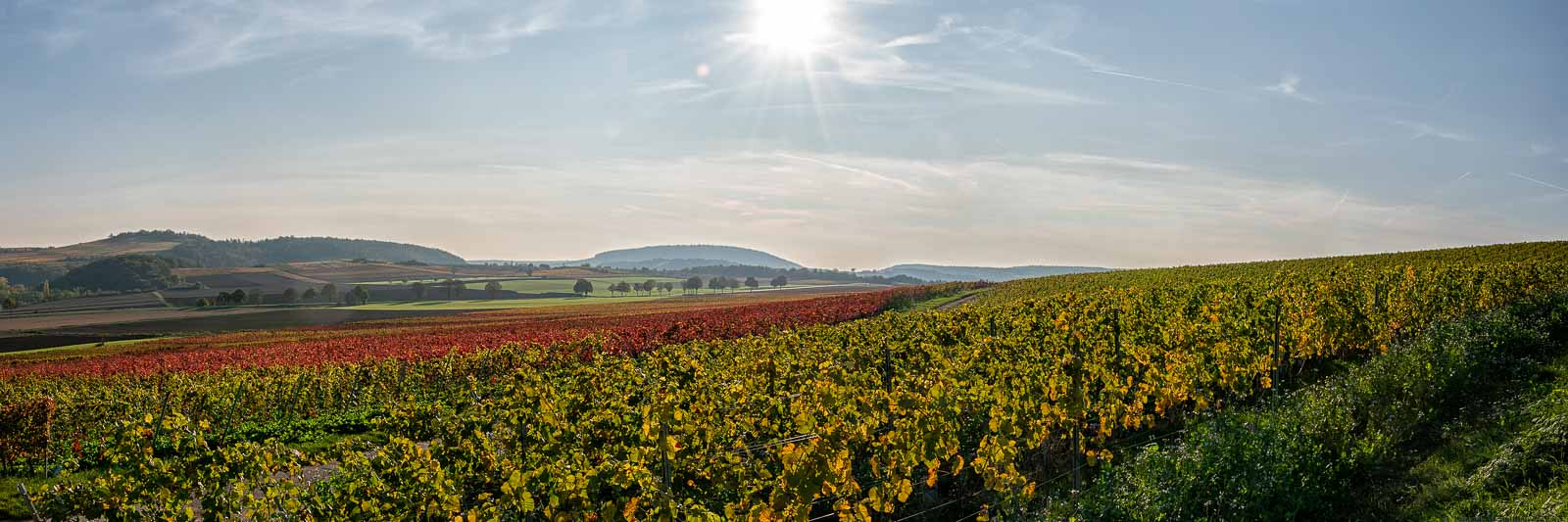 Rheinhessen im Herbst 3zu1