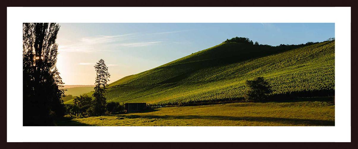 Bild mit Nussbaum-Holzrahmen und Passepartout: Sonnenuntergang am Weinberg Wiltinger Scharzhofberger. Vorne ist eine Wiese. Links sind Bäume und der Scharzhof. Der Himmel ist rötlich und blau.