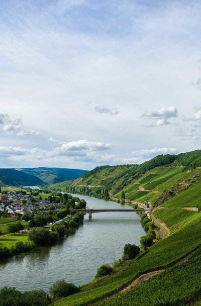 In der Mitte fließt der Fluss Mosel. Über all sind Weinberge. Am linken Ufer liegt der Ort Trittenheim.