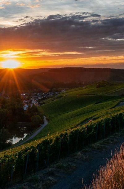 Sonnenuntergang am Weinberg Wiltinger Braunfels an der Parzelle Vols. Am Fuße des Weinberges fließt der Praweltsbach. Daneben liegt der Ort Wiltingen.