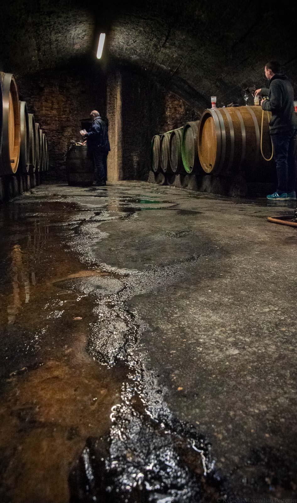 Martin und Stephan Schömann probieren in ihrem Tropfstein-Weinkeller ihre Rieslinge aus den alten Weinfässern.