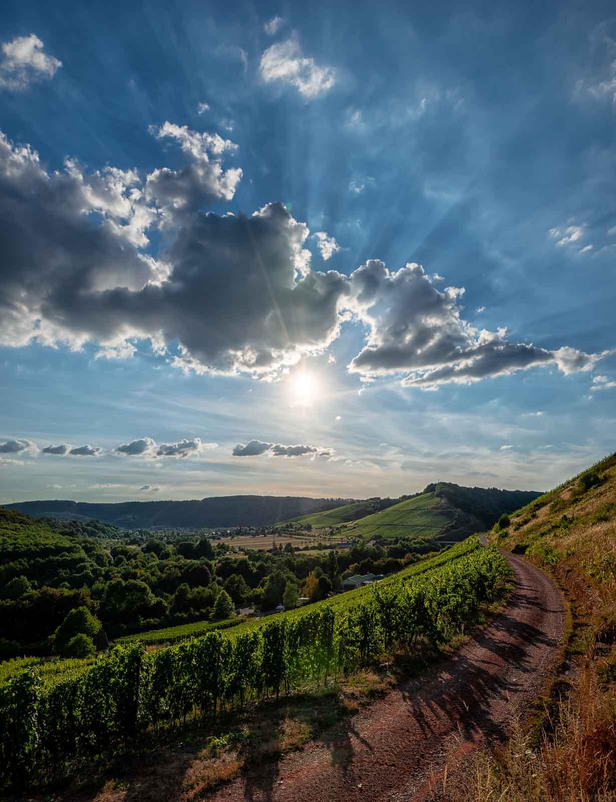 Ausblick vom Weinberg Kanzemer Sonnenberg auf den Weinberg Wawerner Jesuitenberg und den Ort Wawern. Dort befinden sich die Parzellen des Weingutes Dr. Frey. Vorne befindet sich ein roter Steinweg. Am Himmel scheint die Sonne und sind Wolken vorhanden.