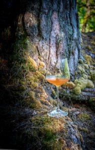 Glas Orangewein vor Baumstumpf