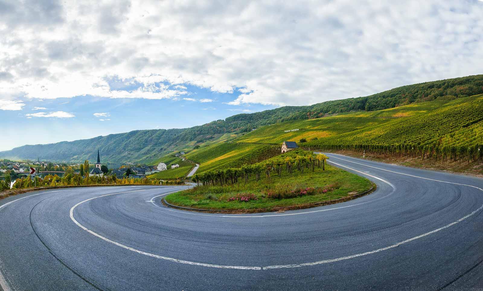 Man blickt auf eine Kurve einer Landstraße im Weinberg Piesporter Goldtröpfchen. Dort haben die Haarts ihre Parzellen.
