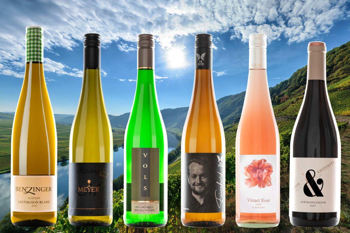 Das Vinaet Probierpaket 6er besteht aus sechs verschiedenen Weinflaschen, die auf dem Bild abgebildet sind. Im Hintergrund sind Weinberge, Wälder ein Fluss und die Sonne am blauen leichte bewölkten Himmel.