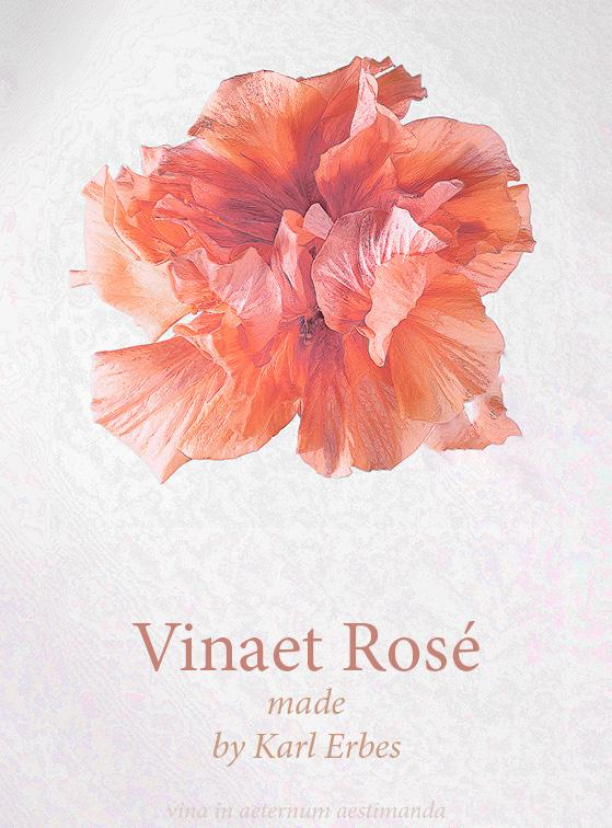 Auf den Vinaet Rosé Etikett befindet sich eine rote Blume. Darunter befindet sich die Aufschrift.