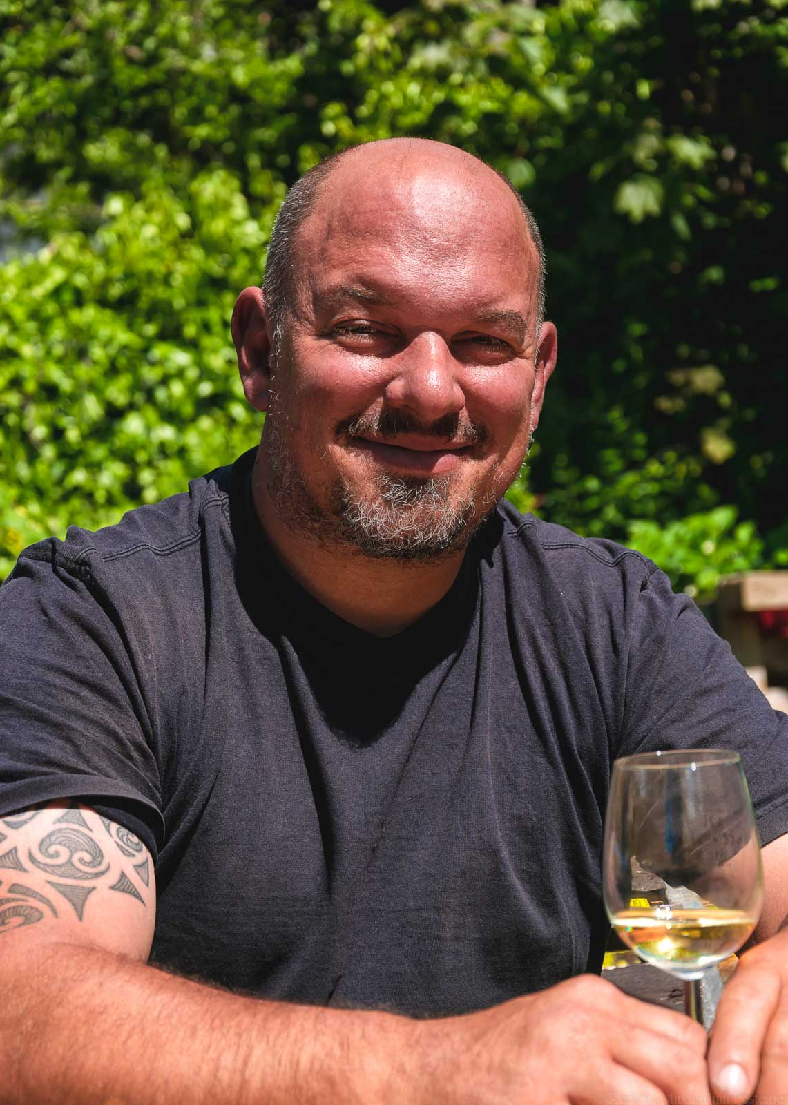 Torsten Meyer Toravino Profilbild im Sommer vor grünem Hintergrund