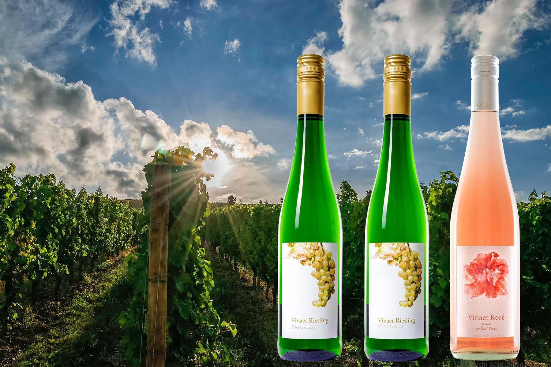 Auf dem Bild erkennt man rechts drei Weinflaschen. Davon sind zwei Vinaet Rieslinge und eine Flasche ist ein Vinaet Rosé made by Karl Erbes.